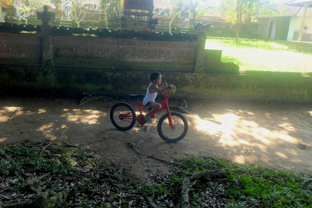 cycling in bali bike tour rice terraces in ubud