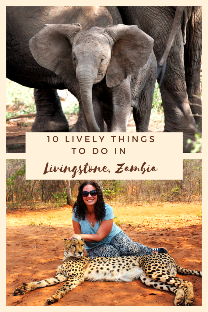Livingstone, Zambia in Southern Africa is chock full of fun things to do, from seeing Victoria Falls to going on safari in Chobe National Park. Here's why you should add this often forgotten African nation on your bucket list.