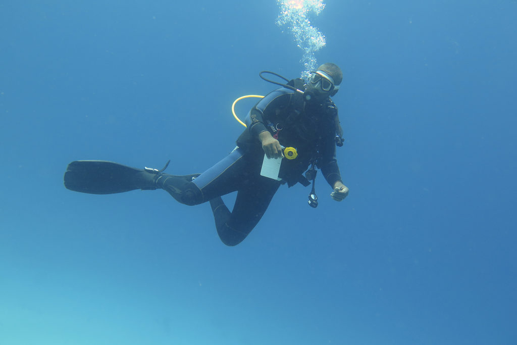 Did you know you can learn to scuba dive in Egypt?