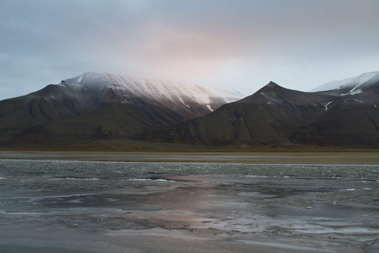things to do in longyearbyen
