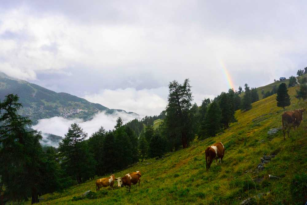 A beautiful rainbow in Nendaz, Valais, Switzerland