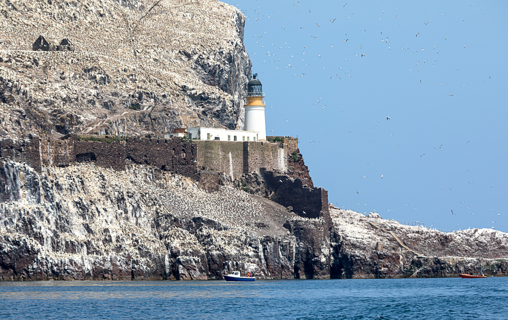 Lighthouse on island with cliff, boat, and seabirds