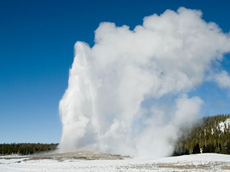 The Old Faithful geyser in Yellowstone National Park spewing steam high into the air on a winter day