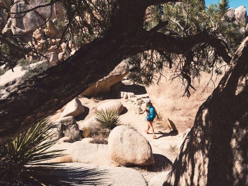7 Best Hikes in Joshua Tree National Park - Eternal Arrival